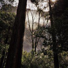 Mist-from-Bridal-Veil-Falls-in-Yosemite-National-Park-1-e1463803373577-225x225.jpg