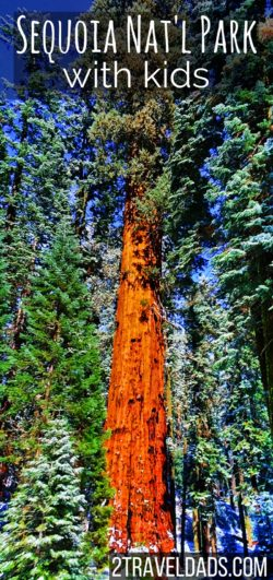 Sequoia National Park with kids is a fun adventure full of nature and discovery. From easy hiking to Park Ranger education programs, it's a gem in the National Park System. 2traveldads.com