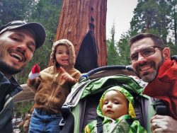 Taylor Family and General Grant Tree Snow in Grant Grove in Kings Canyon National Park 1