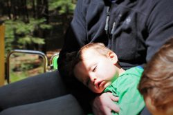 TinyMan sleeping on tram tour in Yosemite National Park