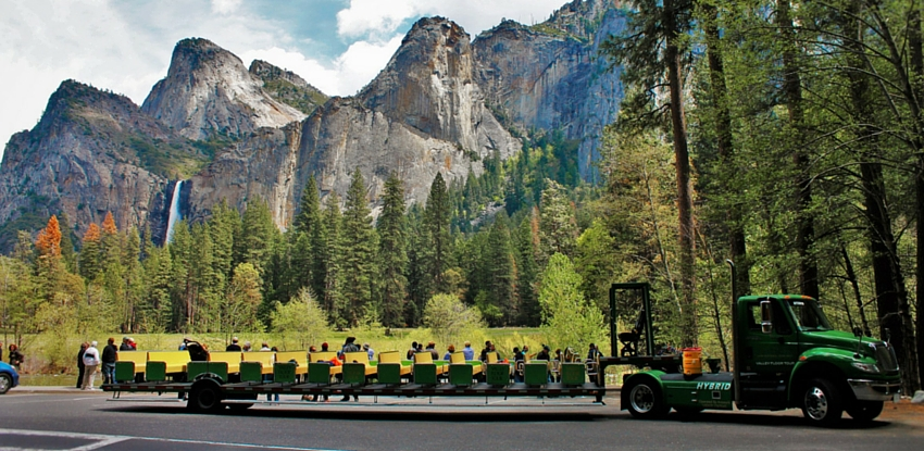 California Coast And Yosemite Park Tours