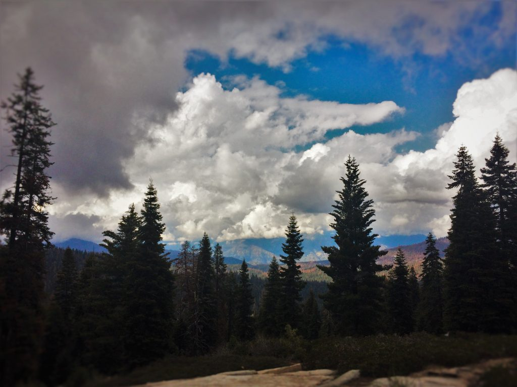 View of Kings Canyon National Park 1.jpg