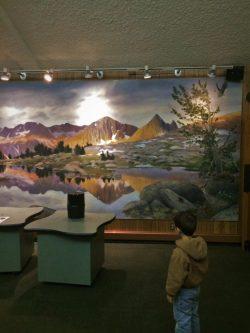 Wildlife-Mural-at-Grant-Village-Visitors-Center-Kings-Canyon-National-Park-1-250x333.jpg