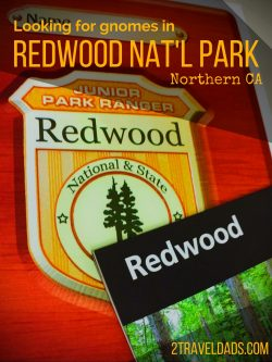 Redwood National Park pin