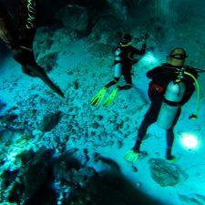 Divers Cenotes Dos Ojos Playa Del Carmen Mexico