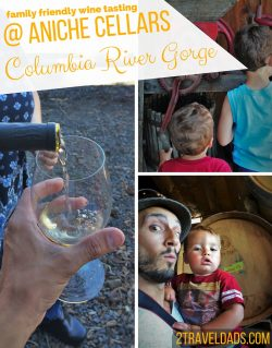 Wine tasting is part of visiting Washington State, so family friendly wine tasting is a welcome find! AniChe Cellars in the Columbia River Gorge is welcoming and ready to give a family friendly experience. 2traveldads.com