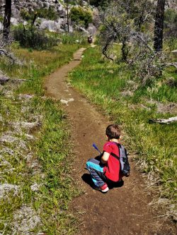 LittleMan and Butterflies on hiking path at Hetch Hetchy Yosemite National Park 1