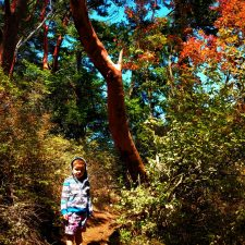 LittleMan in Forest at Deception Pass State Park Whidbey Island 1