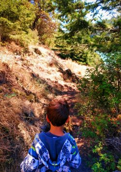 LittleMan in Forest at Deception Pass State Park Whidbey Island 2