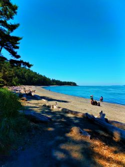 People on Beach at Deception Pass State Park Whidbey Island 3