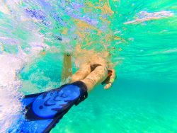Snorkeling with Sting Ray in Akumal 1