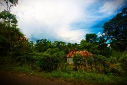 At the Blue Hole St Anns Ocho Rios Jamaica 3