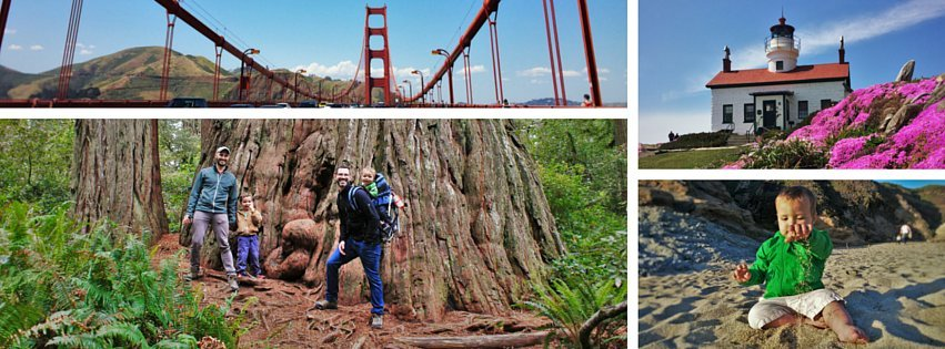 West Coast National Park Road Trip coast header