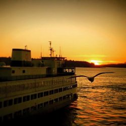 Ferry on Puget Sound Seattle Sunset 1