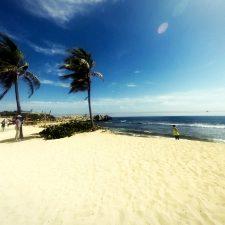Perfect white beach with palms in Labadee Haiti 1