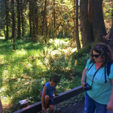 Trippin Twins and Little Man at Hoh Rainforest Olympic National Park 2