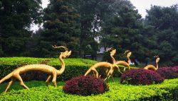 Golden dragons Sculpture at Tang Paradise Xian Imperial Garden 2