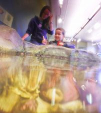 Taylor family at Port Townsend Marine Science Center 6