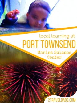 Visiting local aquariums and research centers is a great way to learn about the environment and inspire kids to learn and have fun while traveling. 2traveldads.com