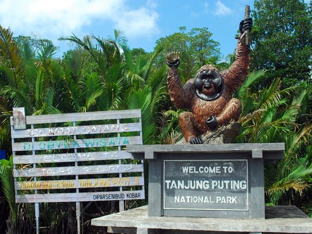 Tanjung Puting National Park Indonesia Tourism