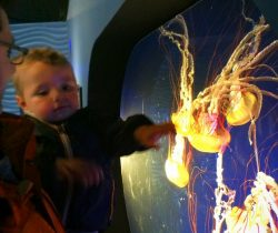 Taylor kids at Point Defiance Zoo and Aquarium 2
