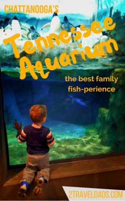 The USA has many aquariums, but the Tennessee Aquarium in Chattanooga provides the best collection of species with visible learning and conservation practices. 2traveldads.com
