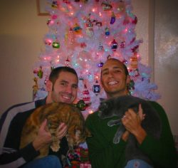 Taylor family Christmas with cats and fake tree