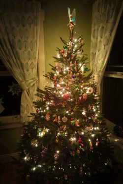 Decorated Christmas Tree 2008