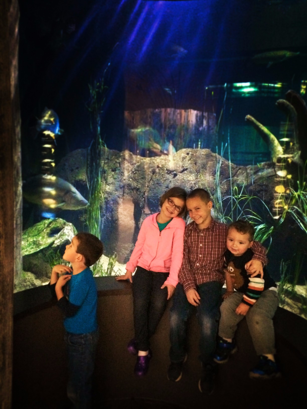 Taylor Kids at Mississippi Delta exhibit Tennessee Aquarium 2