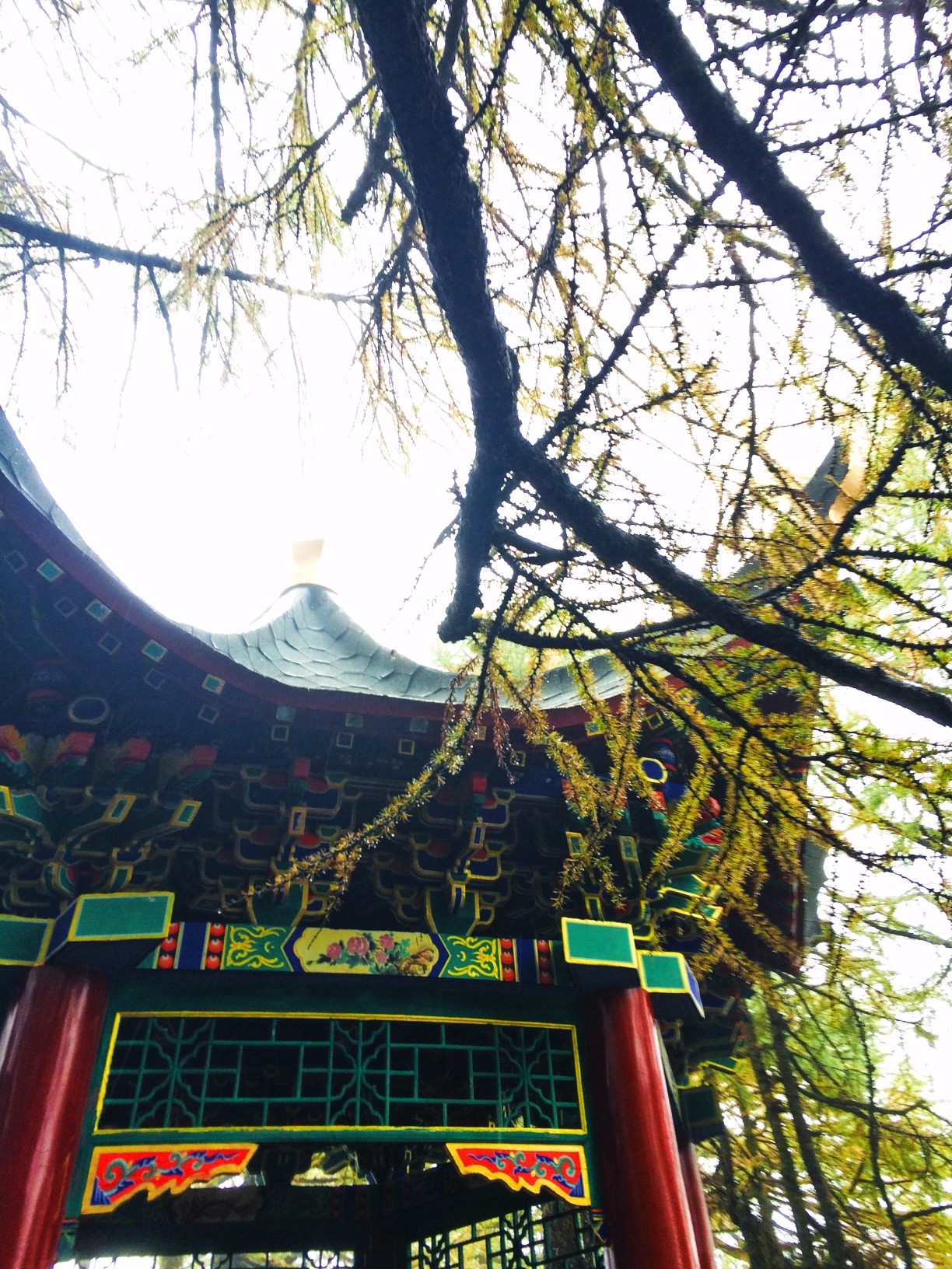 mountain park buddhist personals Chan buddhist meditation at lu mountain temple https: 11,161 singles yoga in the park with sam.