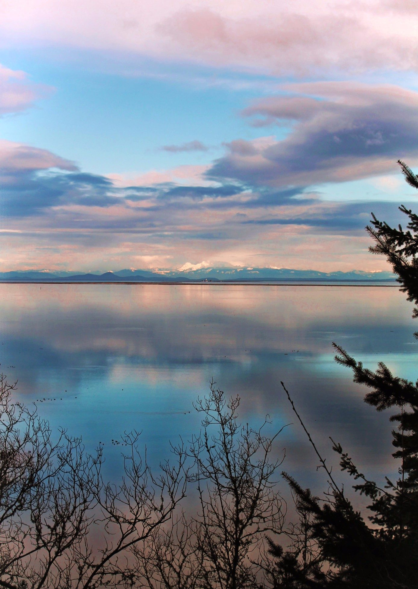 Dungeness National Wildlife Refuge: PNW nature at its finest