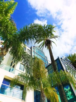 Lowes Hotel Santa Monica 1