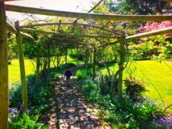 Taylor Family in Victorian Garden Chetzamoka Park Port Townsend 1