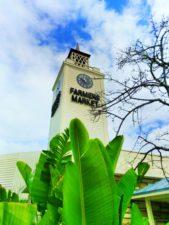 Farmers-Market-clock-tower-at-3rd-and-Fairfax-Market-Los-Angeles-1-169x225.jpg