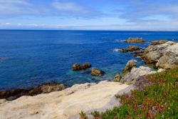Monterey Bay Coastline Passports and Plates 1