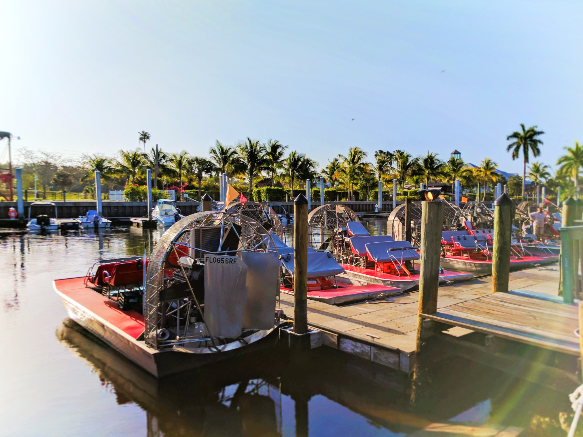Airboats-docked-in-Everglades-City-Florida-1.jpg