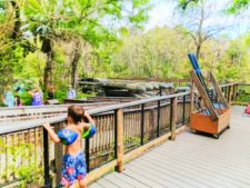 Canoe rentals at Rainbow Springs State Park Florida 1