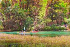Canoeing-and-SUP-at-Rainbow-Springs-Florida-State-Park-3-225x150.jpg