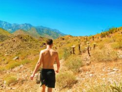 Chris Taylor hiking at Indian Canyons at Agua Caliente Palm Springs 7