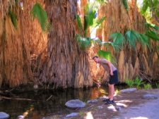 Chris Taylor hiking at Indian Canyons at Agua Caliente Palm Springs 8