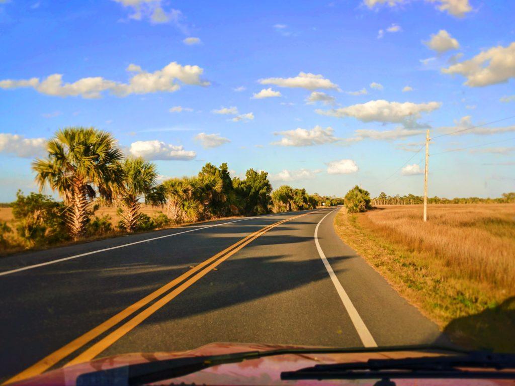 Driving-through-Crystal-River-National-Wildlife-Refuge-Citrus-County-Florida-1-1024x768.jpg