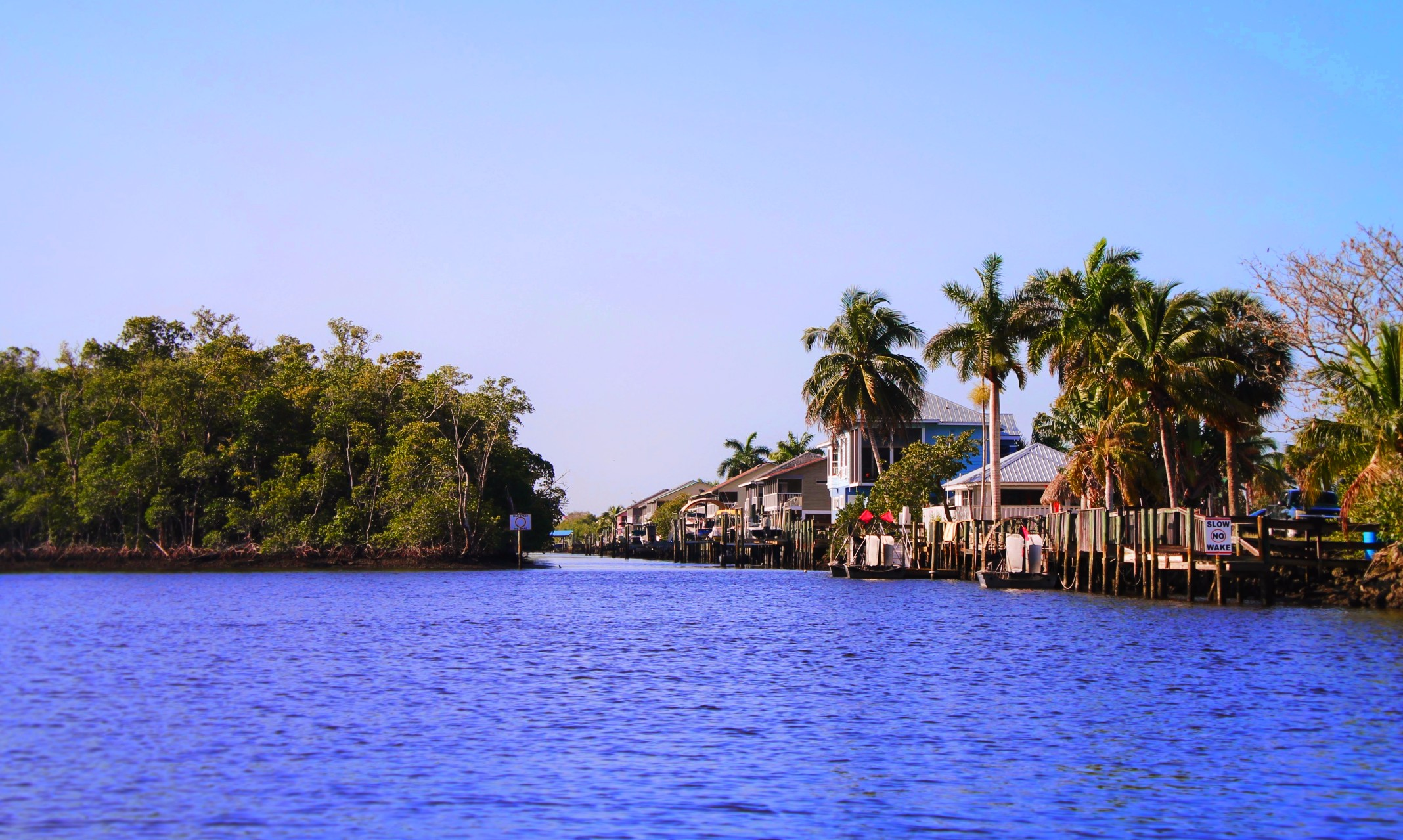 Everglade-City-from-Airboat-Ride-1.jpg