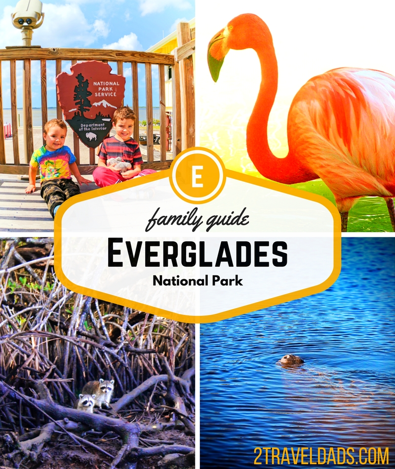 Everglades National Park is home to alligators, flamingos, manatees and more. Florida's greatest swamp is fascinating family travel! 2traveldads.com