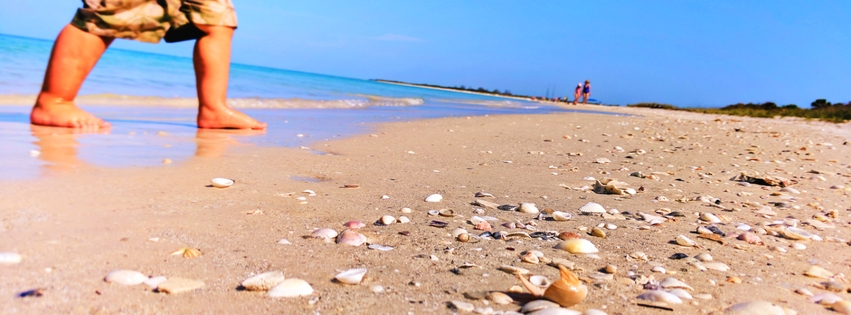 The Florida Gulf Coast Beaches Are Incredible From Sugar Sand To Nothing But Shells