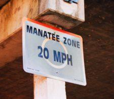 Manatee-Zone-Speed-Sign-Everglades-City-Florida-1-225x196.jpg