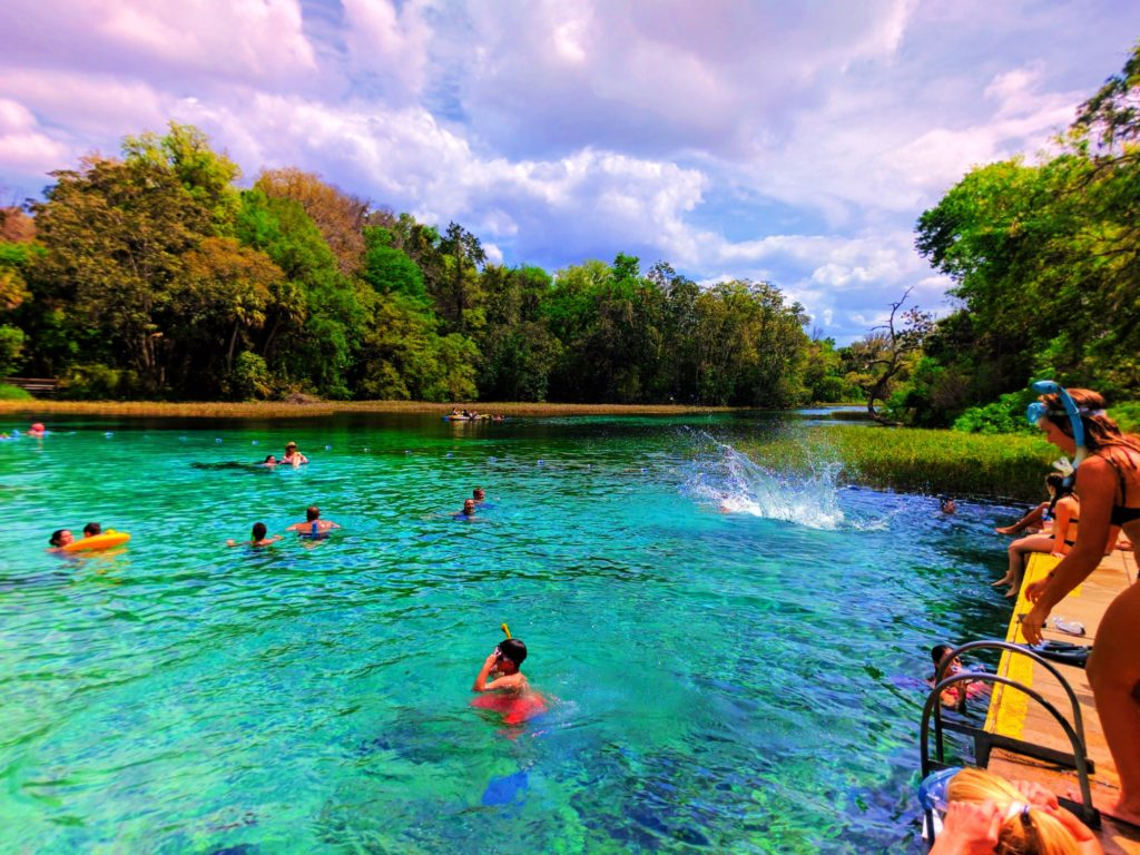 Swimming platform at Rainbow Springs Florida State Park 3