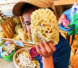 Taylor Family Sponge Shopping in Tarpon Springs Florida 2