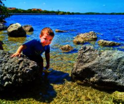 Taylor Family on Nature Trail at Biscayne National Park 8