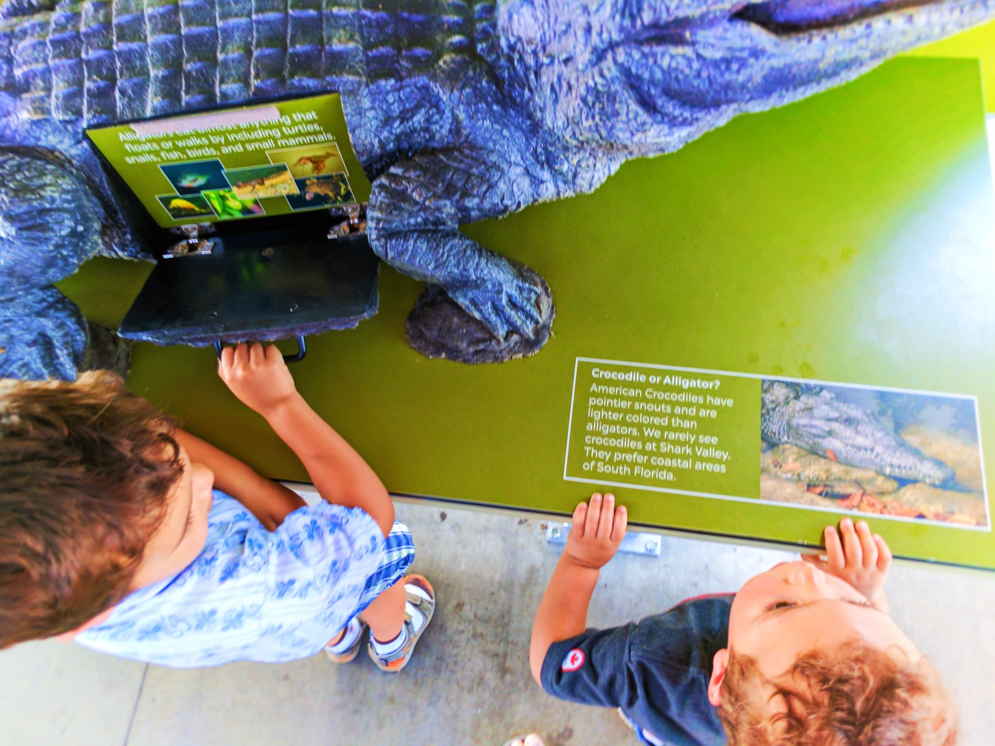 Taylor-Family-with-Alligator-exhibit-Everglades-NPS-Shark-Valley-Visitors-Center-1-1.jpg
