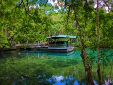 Underwater Viewing building at Homosassa Springs State Park Florida 3